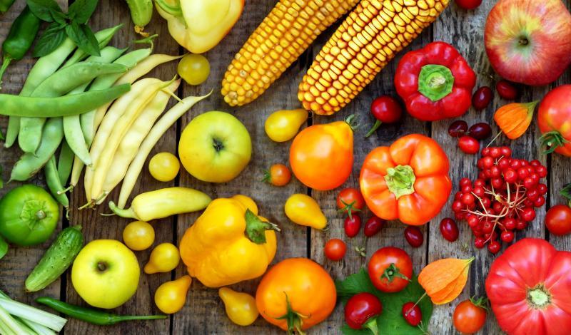 food security AI